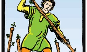 The Seven of Wands tarot card meanings