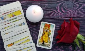 The Queen of Wands tarot card meanings