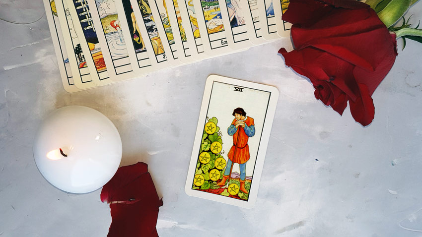 Seven of Pentacles tarot card meanings — True prediction